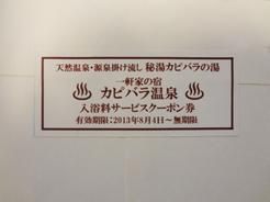 カピバラ温泉.jpg