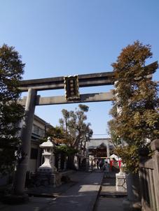 橘樹神社.jpg